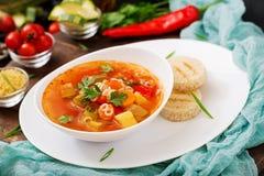 蔬菜通心粉汤- `大汤`,与许多成份的汤-意大利烹调盘  库存照片