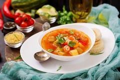 蔬菜通心粉汤- `大汤`,与许多成份的汤-意大利烹调盘  库存图片
