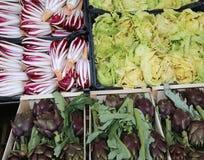 蔬菜水果商摊位用红色苦苣生茯莴苣和许多朝鲜蓟 免版税库存图片