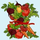组蔬菜 库存例证