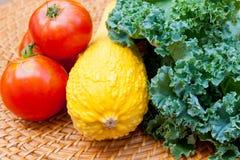 蕃茄、南瓜和无头甘蓝圆白菜源于地方庭院 库存图片