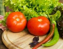 蕃茄、胡椒和沙拉 免版税库存图片