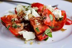 蕃茄、蓬蒿、希脂乳和Pangrattato沙拉 免版税图库摄影