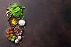 蕃茄、蓬蒿、橄榄油和香料 库存照片
