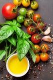 蕃茄、蓬蒿、橄榄油和香料 库存图片
