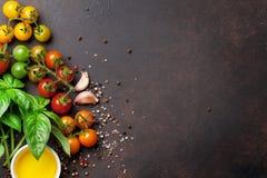 蕃茄、蓬蒿、橄榄油和香料 图库摄影