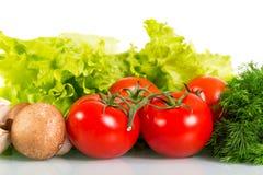 蕃茄、蘑菇、新鲜的绿色莴苣和莳萝 免版税库存图片