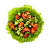 蕃茄、黄瓜和莳萝沙拉在莴苣与叉子 图库摄影