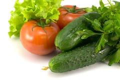 蕃茄、黄瓜和绿色 免版税库存图片