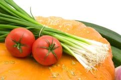 蕃茄二棵蔬菜 库存图片