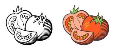 蕃茄例证 免版税库存照片
