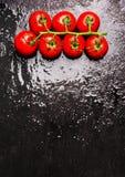 蕃茄分支与在湿黑暗的板岩,食物背景的水下落 免版税库存照片