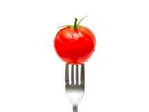 蕃茄和叉子 免版税库存图片
