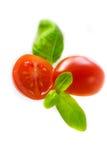 蕃茄和在白色隔绝的蓬蒿叶子 免版税库存照片