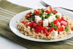 蕃茄和奎奴亚藜沙拉 免版税库存图片