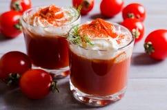 蕃茄和奶油开胃菜  库存图片