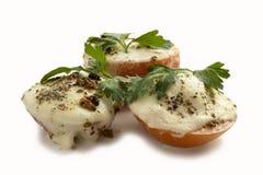 蕃茄和无盐干酪乳酪热的开胃菜  免版税库存图片
