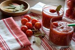 蕃茄和汁 免版税库存照片