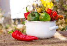 蕃茄和红辣椒在白色碗 库存图片