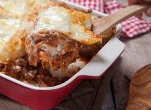 蕃茄和绞细牛肉烤宽面条卷 免版税库存图片