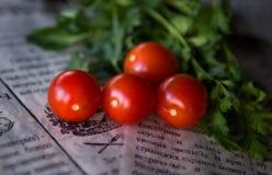 蕃茄和草本 库存图片
