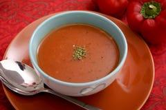 蕃茄和蓬蒿汤  免版税库存照片