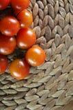 蕃茄和蓬蒿 免版税图库摄影