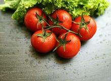 蕃茄和蔬菜沙拉 免版税库存图片