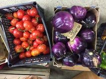 蕃茄和melanzanes菜 免版税库存图片
