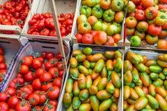 蕃茄在一个市场上在巴勒莫 免版税库存照片