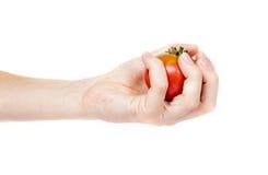 蕃茄在妇女手上 免版税库存图片