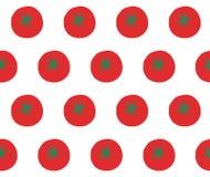 蕃茄在白色传染媒介仿造 库存例证