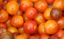 蕃茄待售 库存照片