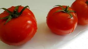 蕃茄成熟健康未加工的明亮的纯净水倾吐的维生素慢动作射击,湿纺 股票视频