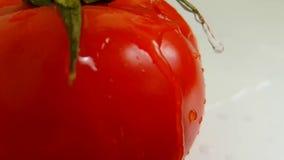 蕃茄成熟维生素未加工的明亮的纯净水倾吐的维生素慢动作射击,湿spinni ng 股票录像