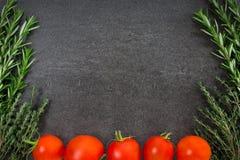 蕃茄新鲜的草本 库存图片