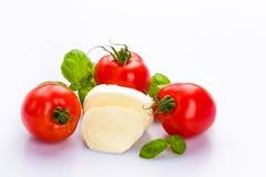 蕃茄无盐干酪 库存照片