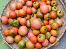 蕃茄果子在市场上 免版税库存图片