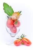 蕃茄样式科系在玻璃的exculentum磨房 免版税库存照片