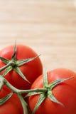 蕃茄桁架 库存照片