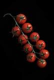 蕃茄樱桃保险费 库存照片