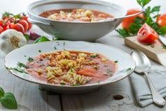 蕃茄汤做ââof新鲜蔬菜 库存图片