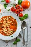 蕃茄汤牌照与手工制造的新鲜蔬菜的 免版税库存照片
