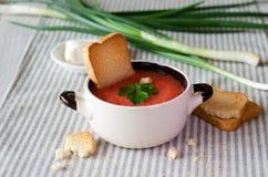 蕃茄汤用乳酪 库存图片