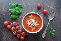 蕃茄汤用新鲜的蕃茄和蓬蒿 库存照片