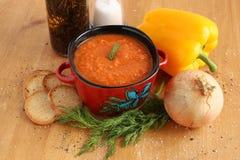 蕃茄汤用薄脆饼干和菜 图库摄影