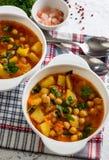 蕃茄汤用鸡豆 库存图片