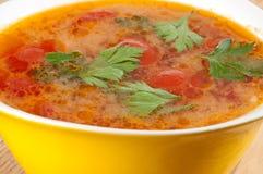 蕃茄汤 免版税库存照片