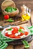 蕃茄沙拉用无盐干酪乳酪和橄榄油 图库摄影
