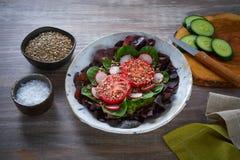 蕃茄沙拉用种子萝卜菠菜莴苣 免版税库存图片